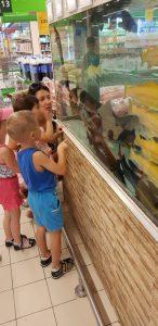 Наши детки на экскурсии в магазине